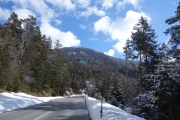 Nice weather and nice gradual ascent up to Reschenpass