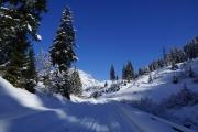 Plodding through the snow