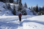 Nice chat with four skiers on our route