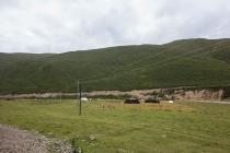Black nomad tents