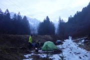 Camping in the woods and snow close to Stallehr