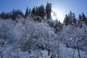 Great snow and sun