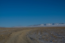 The road to Altai