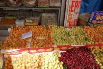 Fresh apricots of Malatya
