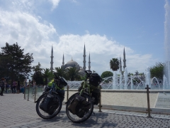 Mojo and Isaba with blue mosque