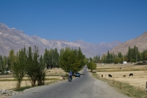 Cycling out of Ishkashim working on the harvest