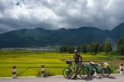 Rice fields near Dali