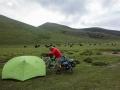 Camping in grasslands