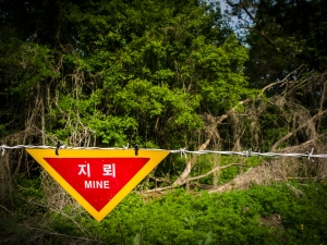 Land mines used as third defense line