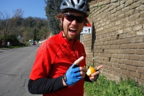 Martin eating a sour and bitter orange