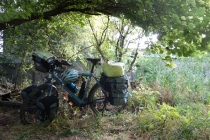 Camping in an orchard
