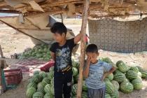 Two cute boys selling watermelon