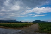 Hills of Austria