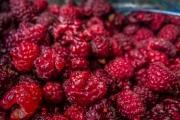 Our precious gift! Raspberries