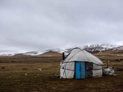 A yurt!