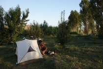 Camping in peach orchard